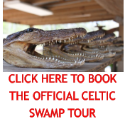 CLICK HERE TO BOOK THE OFFICIAL CELTIC SWAMP TOUR